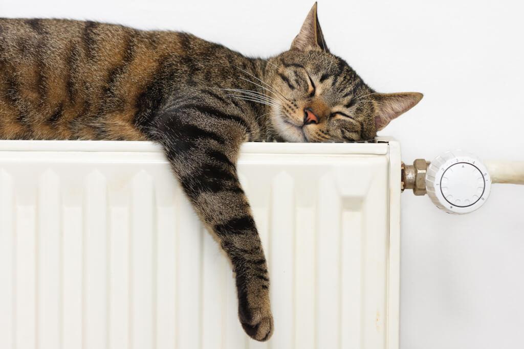 Радиаторы: как они работают, виды, достоинства и недостатки
